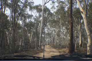 dry track 6