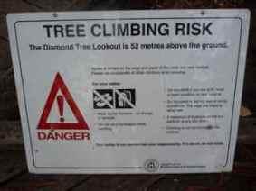 cli tree