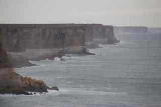 nal ocean 6