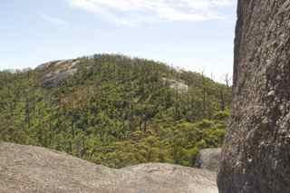 skywalk view 2