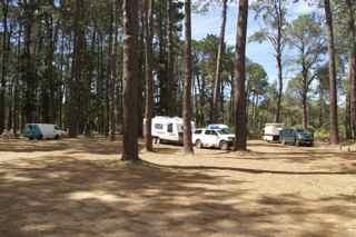 smal camp 2
