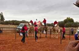 ayes rock camels r 5