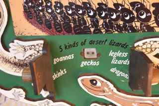 alice boards 4
