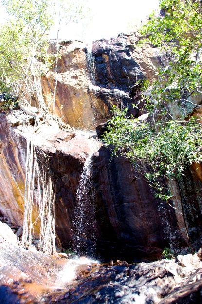 robin-falls-6