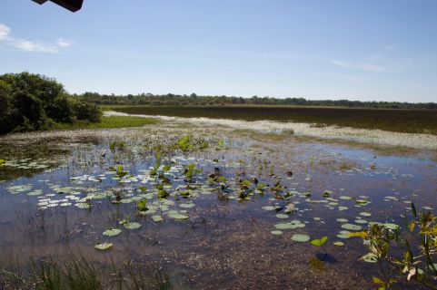 kak-wetland