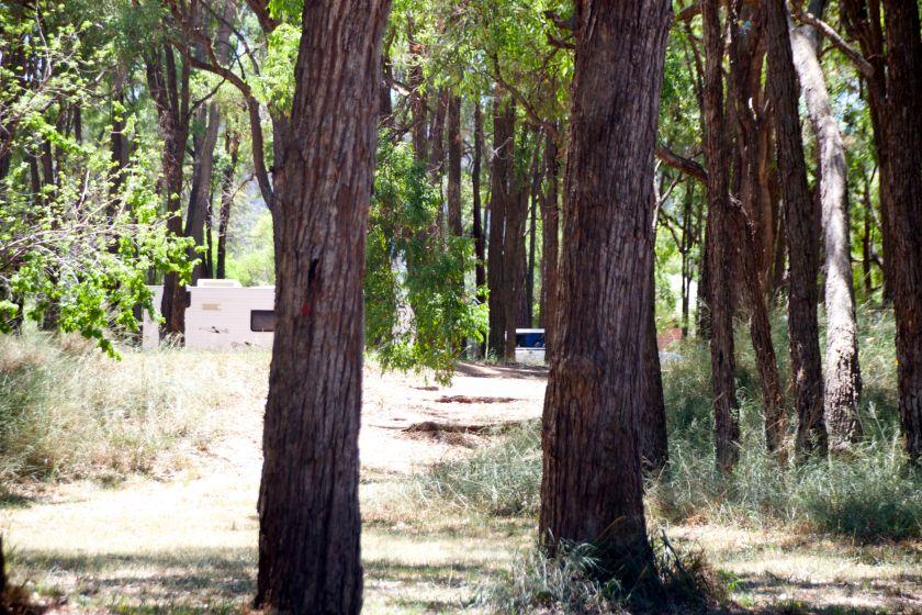 Mcnamara park