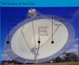 dish 10