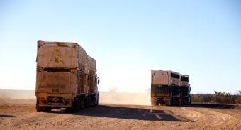 truck aa