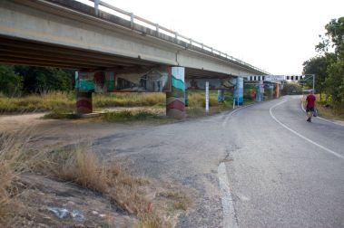 rollingstone 14